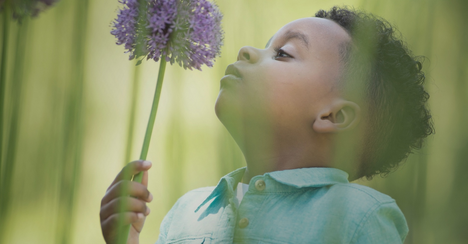 young boy smelling a flower in the park